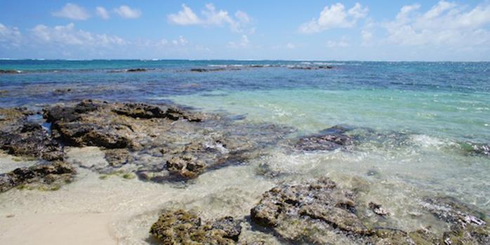 5 bonnes raisons d'aller à l'Ile Maurice