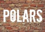 10 idées de polars-top