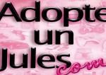 adopteunjules-top