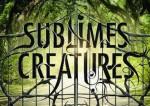 sublimes créatures-top